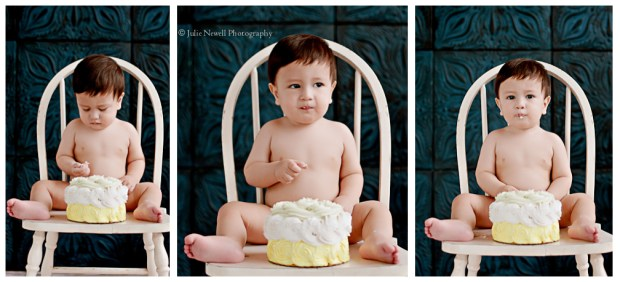 Julie Newell Photography The Celebrated Baby Chicago Baby Photographer 11