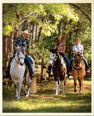 1661457569_Horseback