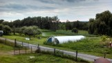 farm view from garlic attic