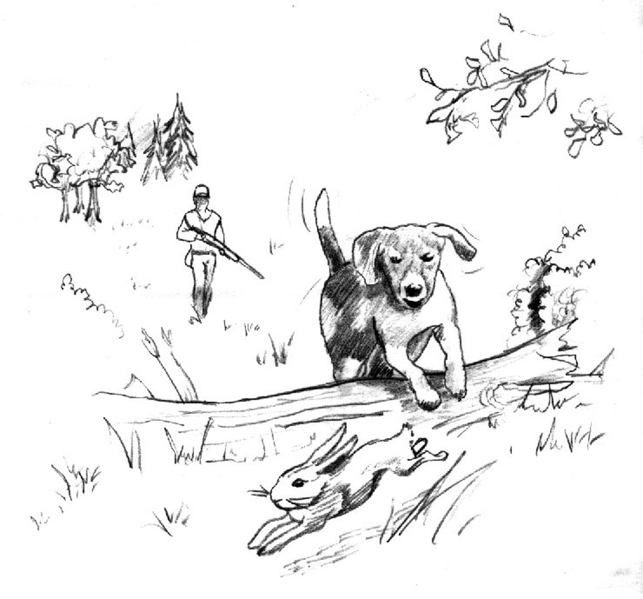 A Dog S Life By Chuck Thurston
