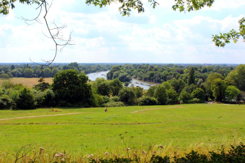 view from Richmond Hill in London