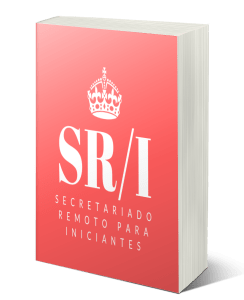 e book iniciante - E-books
