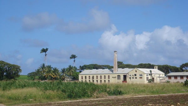 Codrington factory, BehindGod's Back