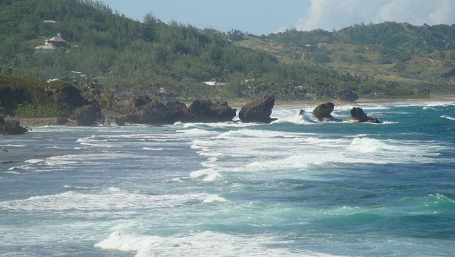 Bathsheba Pools, long shot