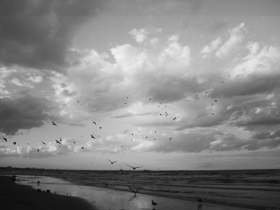 marea neagra dupa furtuna alb negru constanta