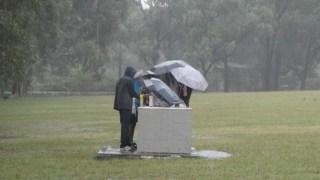 bbq in rain