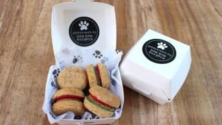 bow-wow-burger-dogs-london-porkys-bbq