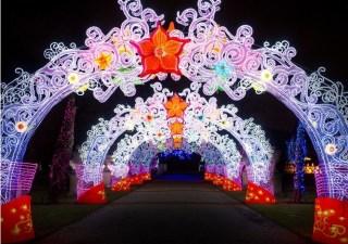 magical-lantern-festival-1
