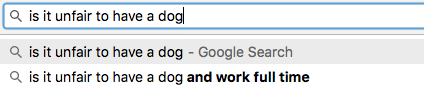 dog-london-google-funny
