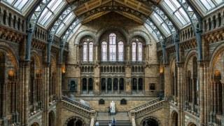 natural-history-museum-scavenger-hunt-text-clues