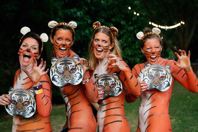Streaking London Zoo tigers