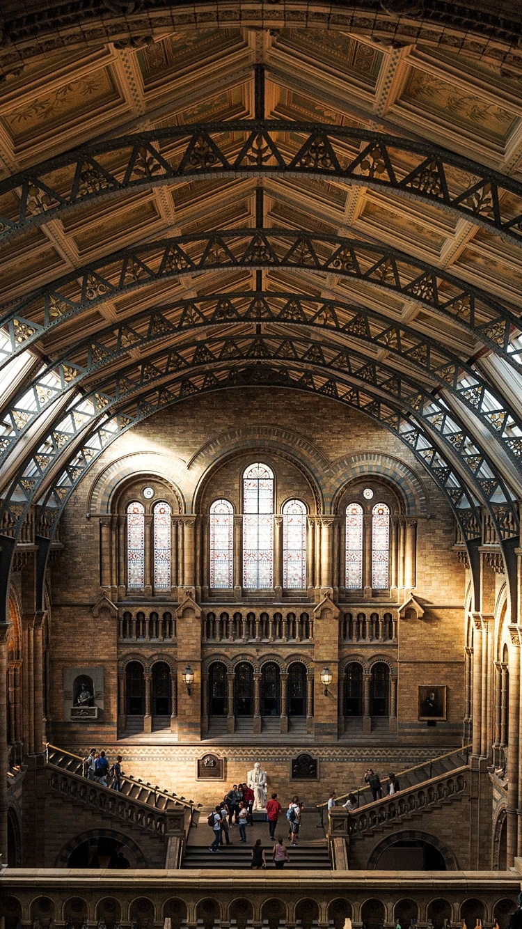 Natural History Museum hall photo
