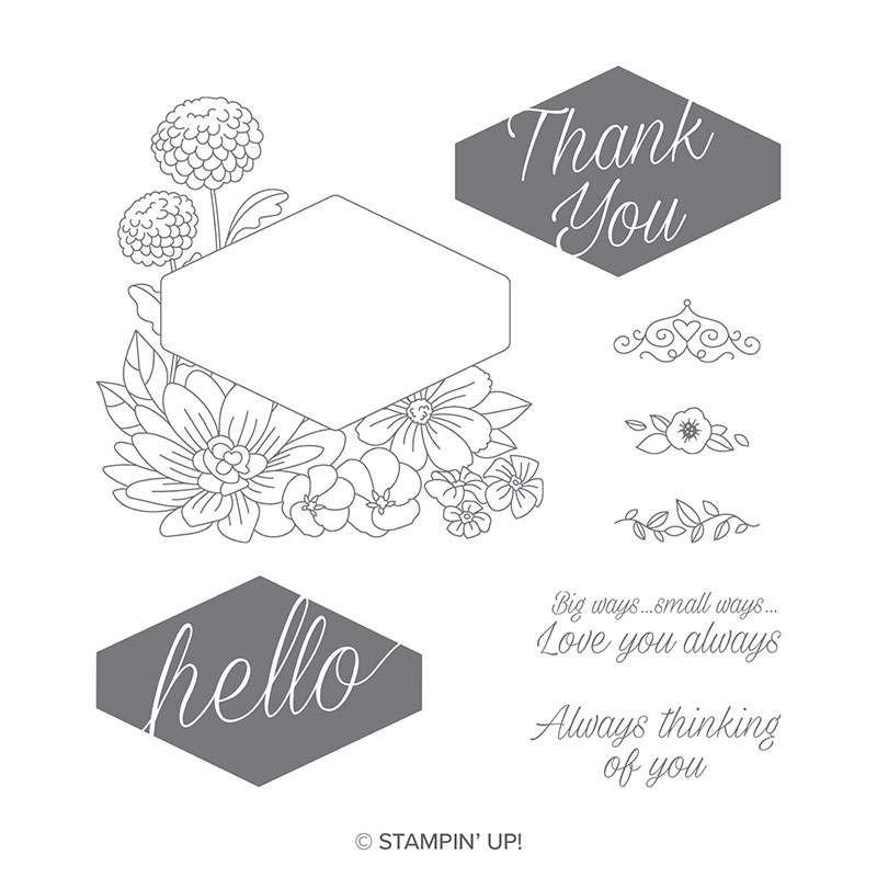 Stampin Up Accented Blooms stamp set