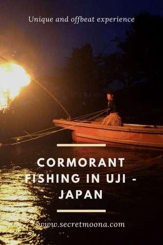 Cormorant fishing in Uji - Japan