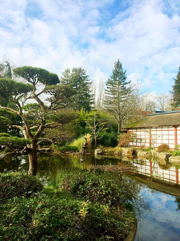 Jardin Japonais de Nantes - things to do in Nantes