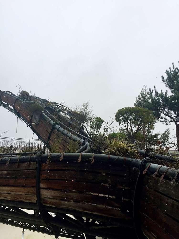 Heron tree (arbre a Heron) Machines de l'Ile