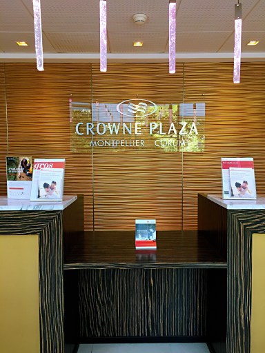 Crowne Plaza Montpellier Corum - Things to do in Montpellier