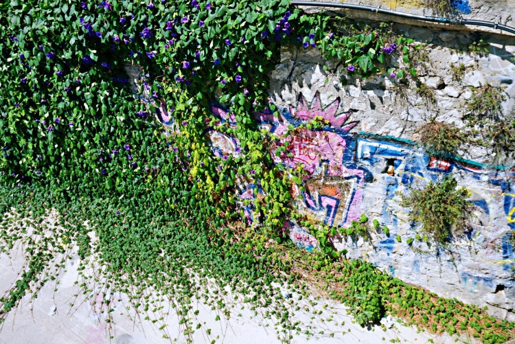 Street art surrounded by pretty leather flowers - Street art Montpellier