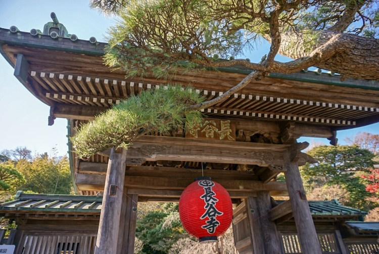 Hasedera Temple Gate - Kamakura day trip