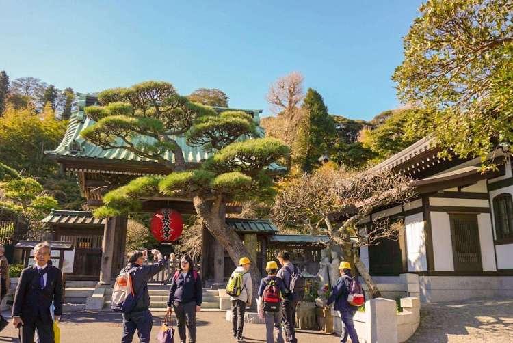 Entrance to Hasedera Temple - Kamakura day trip