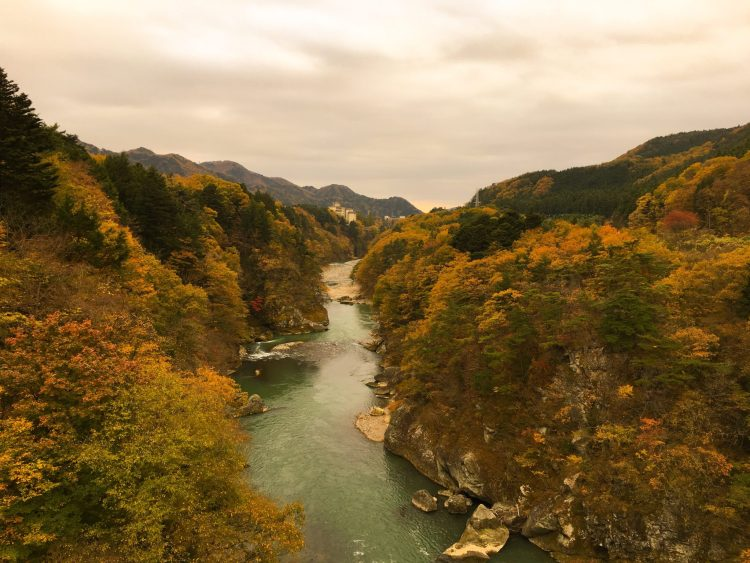 Kinugawa river surrounded by trees - planning a trip to Japan for the first time