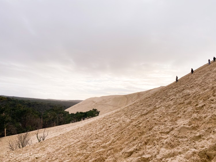 4 people descending a sand dune facing a forest