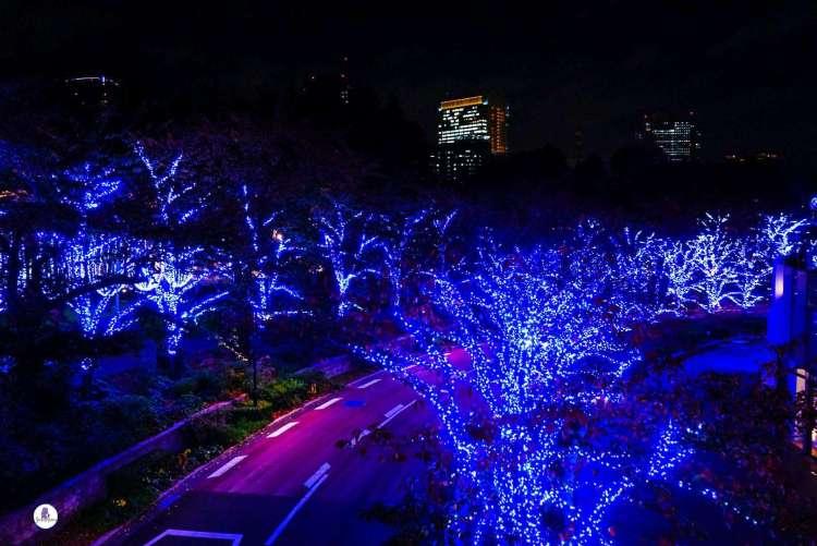 Blue Christmas, Roppongi Hills Artelligent , Tokyo