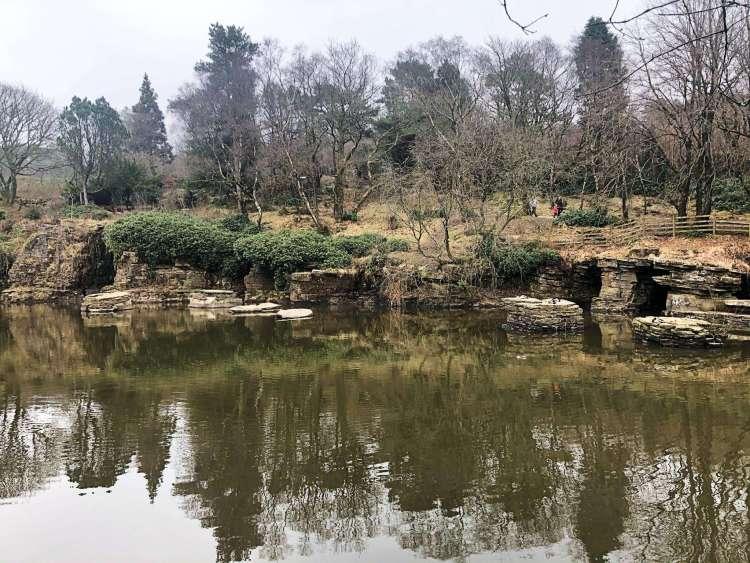 Revington Japanese Garden in Lancashire