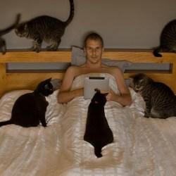 Votre chat vous réveille le matin? Vous avez probablement un cancer!