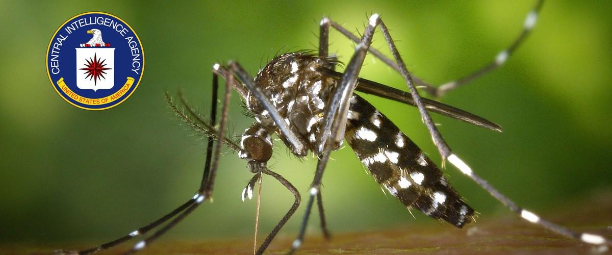 Pourquoi les moustiques ne piquent-ils jamais au visage ? Merci la CIA ...