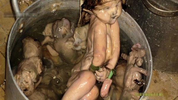 manger-bebe-chinois-chine-1 La Chine légalise la consommation de fœtus et de bébés morts issus des avortements - Tollé internationnal