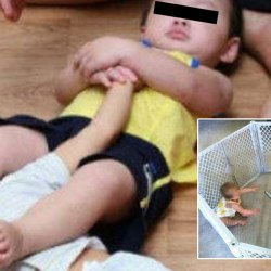 Les combats de bébés, ou baby MMA, la nouvelle passion clandestine des Français