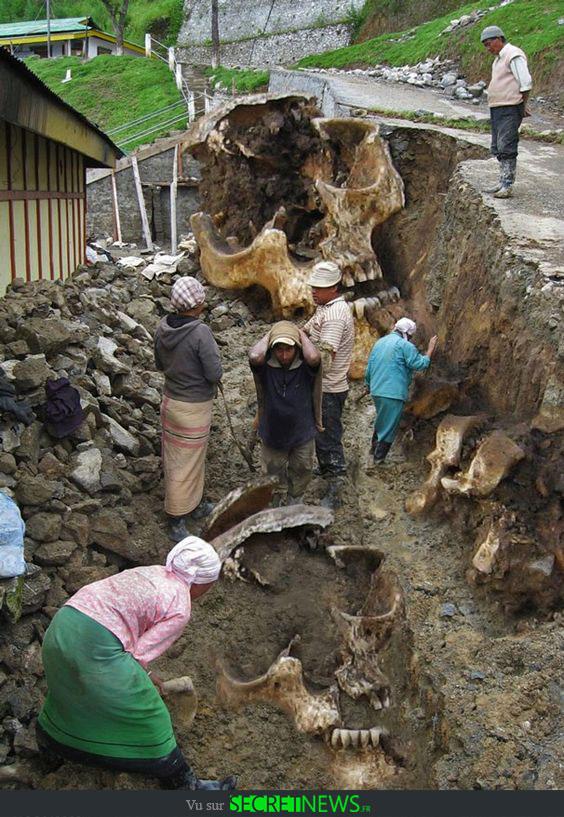 geant-nephilim-giant-photoshop-fake-hoax-12 Les géants et les nephilims ont existé  ! Ces photos du FBI déclassifiées par erreur le prouvent