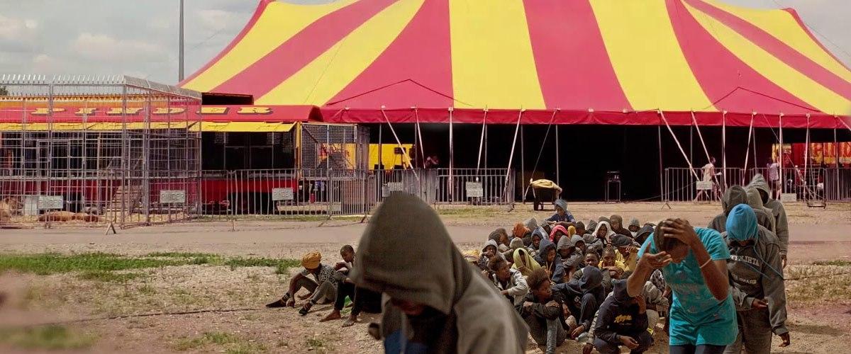Défense des animaux : La Libye va remplacer les animaux de cirque par des esclaves