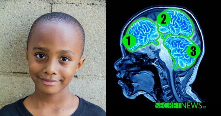 enfant-plus-intelligent-monde-trois-cerveaux SecretNews