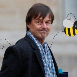 Nicolas Hulot confie une mission sur la protection des abeilles au patron de Bayer-Monsanto