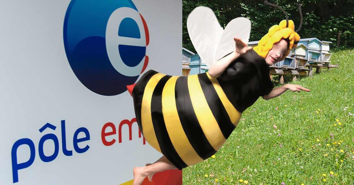 abeille-homme-1 Nouvelle réforme : Pôle emploi s'appellera « Bureau de l'Assistanat » pour donner mauvaise conscience aux chômeurs