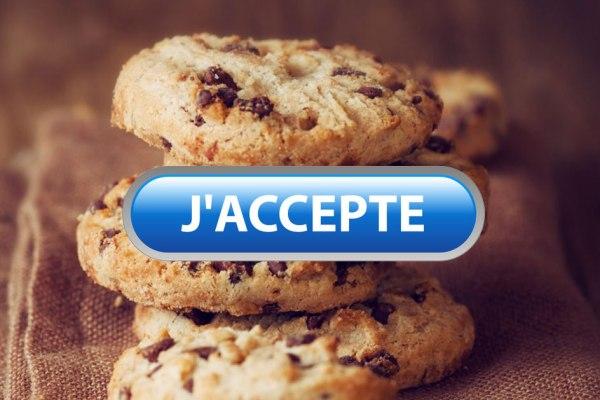 Obésité : à force d'accepter des cookies toute la journée, de + en + d'Européens sont en surpoids