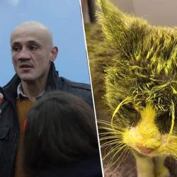 Les ADN des donateurs de la cagnotte Dettinger comparés avec ceux des agresseurs du chat de Marlène Schiappa