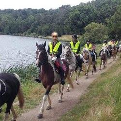 Des gilets jaunes forment des unités de cavalerie pour prendre l'Élysée