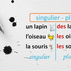 Économie en Auvergne : les S et les X des accords pluriels supprimés de l'orthographe