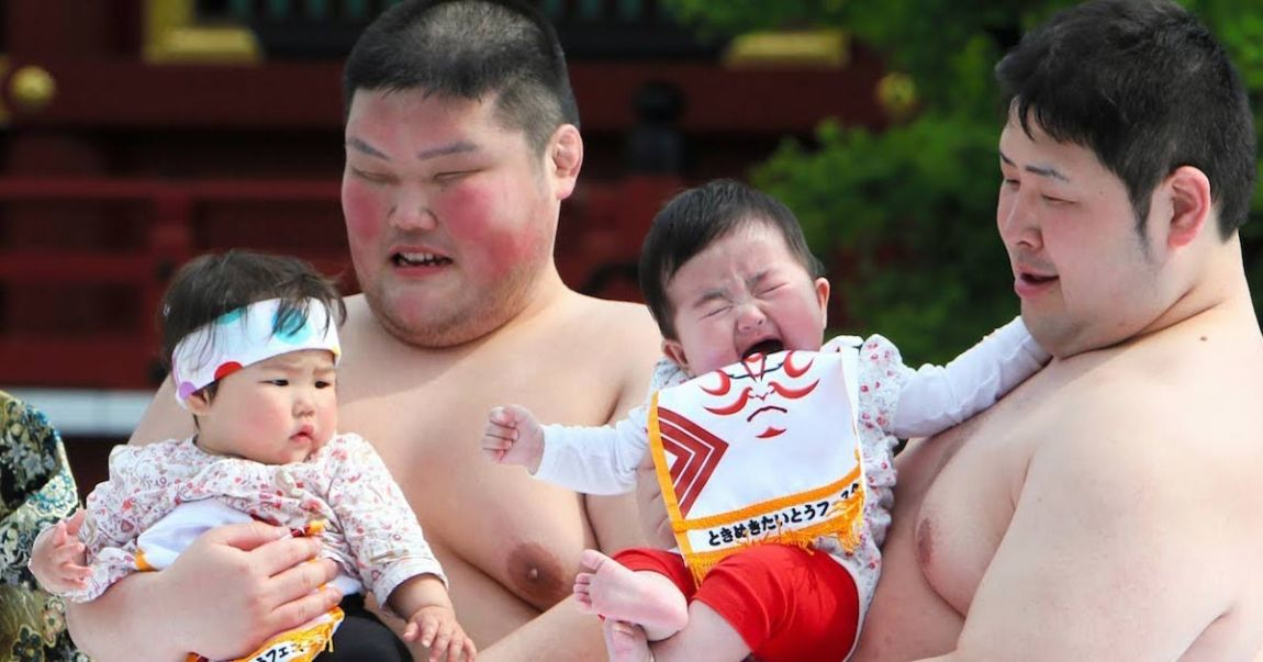 sumos Pour grossir, les Sumos mangent des bébés vivants riches en protéines