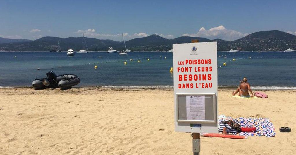 Des touristes portent plainte en découvrant que les poissons font caca dans l'eau