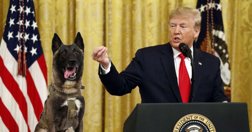 Trump nomme le chien qui a traqué al-Baghdadi au poste de ministre de la Défense