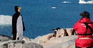Pôle Nord : Ségolène Royal fait ses adieux aux pingouins