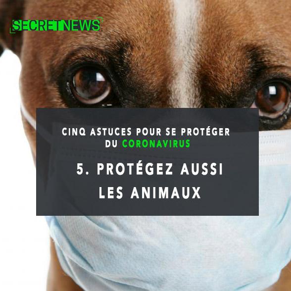 conseils-coronavirus-5 Santé : 5 astuces pour se protéger du coronavirus