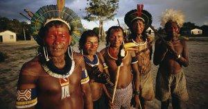 Covid_19 : leur alimentation riche en chloroquine protège les indiens d'Amazonie