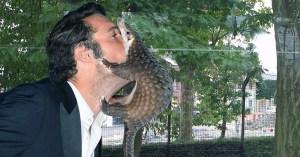 """""""Vivez à fond, tombez malade !"""" : Ivre, Nicolas Bedos embrasse un pangolin au zoo de Maubeuge"""