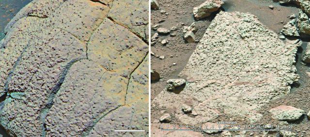 好奇號採巖石考古:火星有水 生物宜居   secretnite