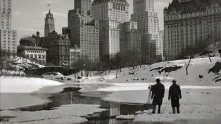 Animated Project Central Park NYC